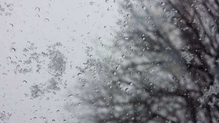 В четверг в Рязанской области ожидается мокрый снег