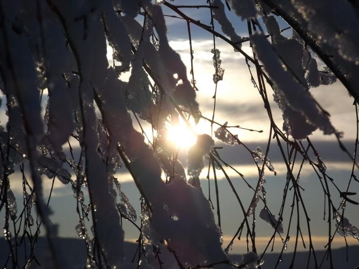 В ночь на 5 января температура в Рязани опустится до -4 градусов
