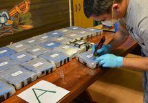 Обнаруженные в диппочте наркотики. Фото: twitter.com/gendarmeria