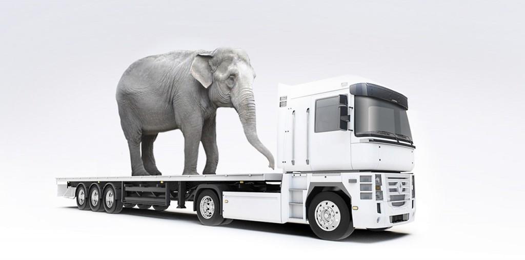 Перевозки негабаритных грузов в Тольятти: выгодные цены и сжатые сроки