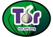 Логотип анонимайзера Tor