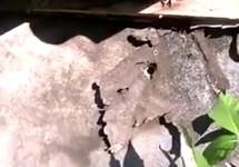 Скрытая камера напротив дома тестя Рустема Исмаилова. Кадр видео Фатмы Исмаиловой