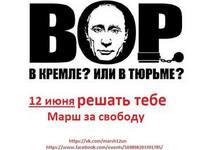 Плакат к акции 12 июня. Источник: ФБ-страница Дарьи Полюдовой
