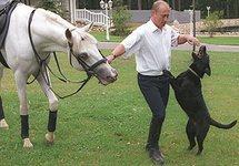 РБК: Фигуранты дела о хищениях на даче Путина брали откаты при работах в Кремле