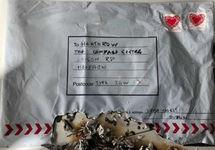 Офисы лондонских аэропортов и вокзала получили по почте взрывные устройства